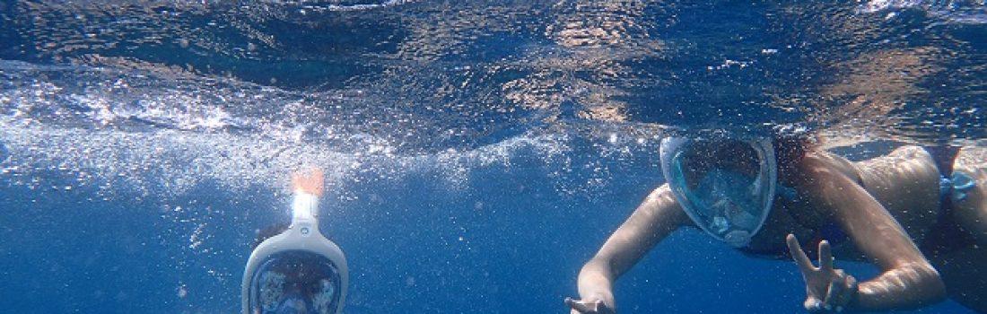 divers-diving-enjoyment-734725
